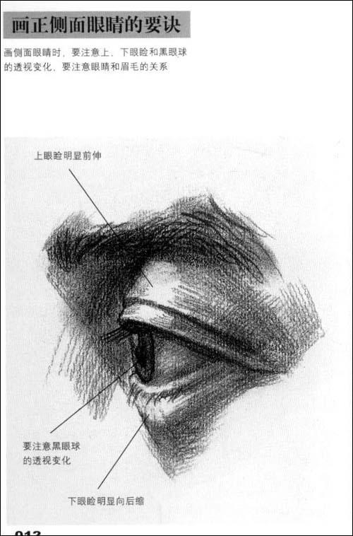 2010年部分院校及联考素描试题 考场得分秘诀 画正面眼睛的要诀 画正