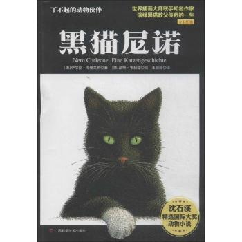 黑猫小说封面素材