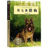 第七条猎狗/动物小说大王沈石溪.品藏书系