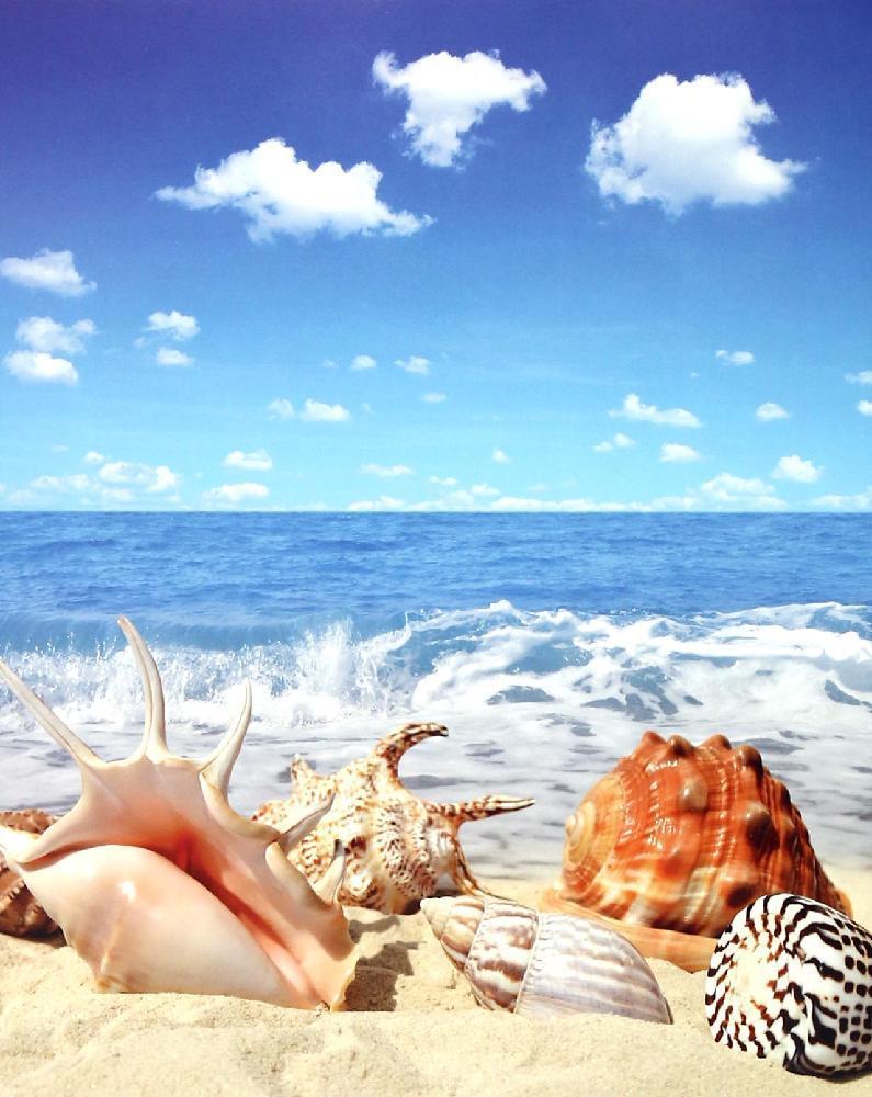 《中国海洋生物