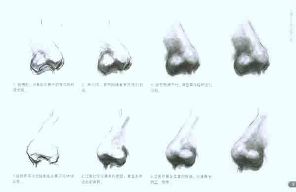 素描鼻子的画法图解 素描鼻子的详细画法 素描鼻子的画法