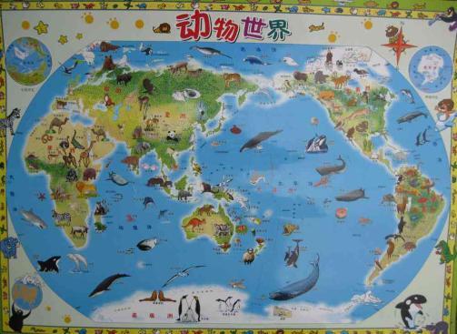 我的第一张世界地图