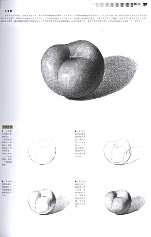 构图常见问题:yes&no Ⅱ.单个详解 1.苹果 2.番茄 3.梨 4.