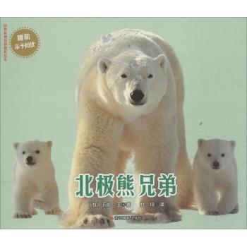 动物亲情故事摄影绘本北极熊兄弟