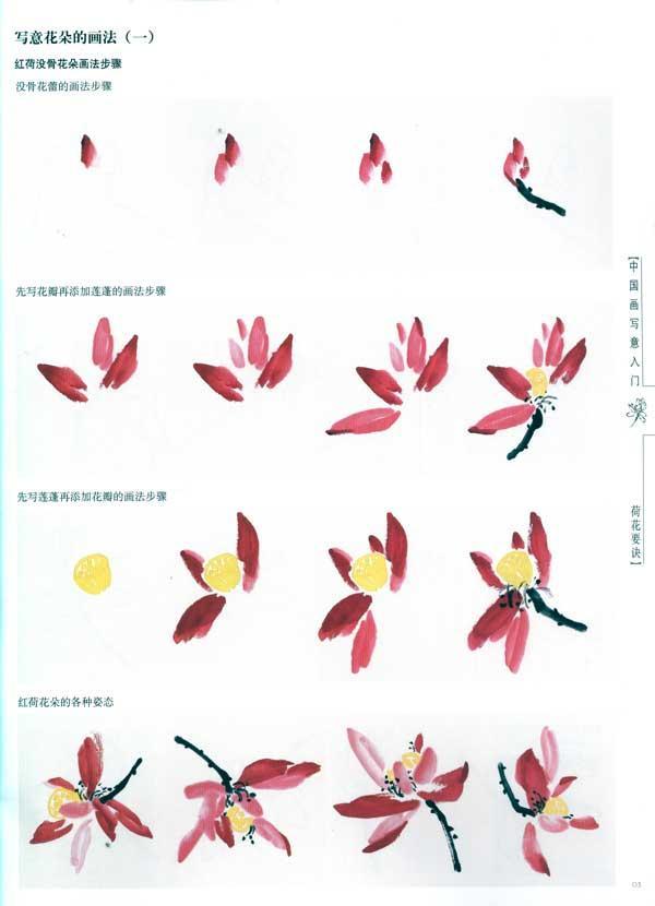 芦苇写意画_荷花的画法图片展示_荷花的画法相关图片下载