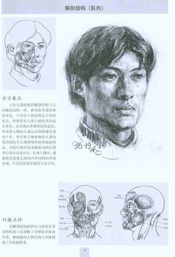 頭骨肌肉結構圖素描