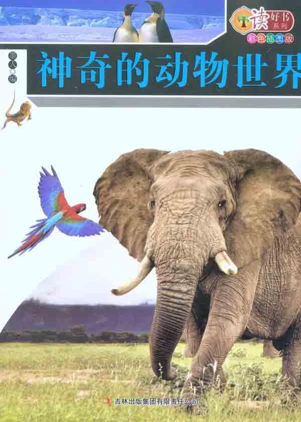 神奇的动物世界图片