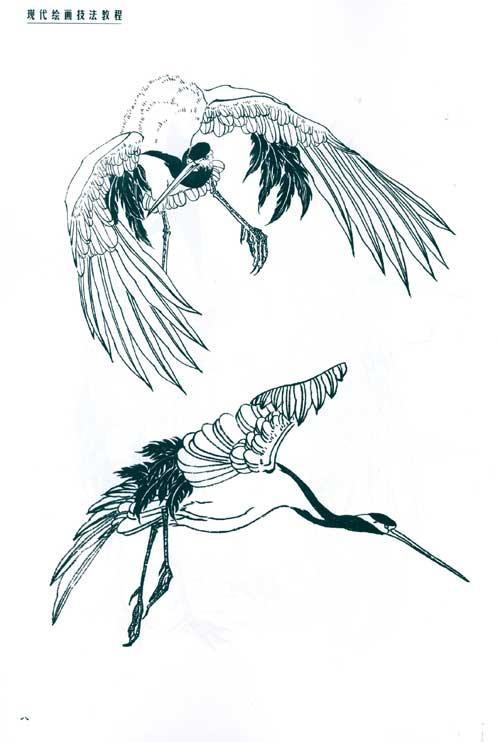 儿童学画丹顶鹤的画法简单 点击这里 丹顶鹤简笔画图片大全