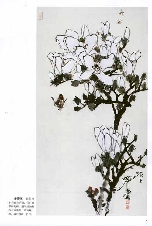 玉兰花简单画法图片 翅膀的画法简单