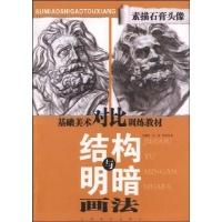 王慧玲-技法教程-文轩网 基础美术对比训练.素描石膏头像结构与明暗