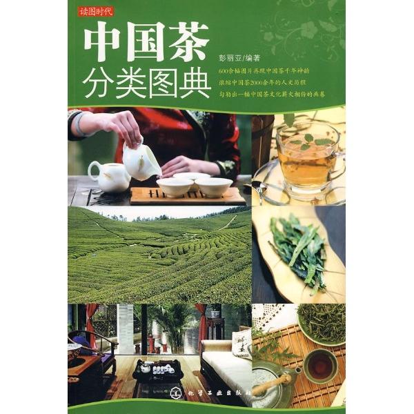 学汉语启动页页面设计