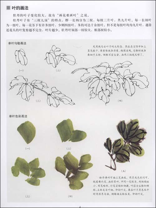 国画牡丹叶子画法视频,牡丹叶子的画法,叶子 花的画法,叶子高清图片