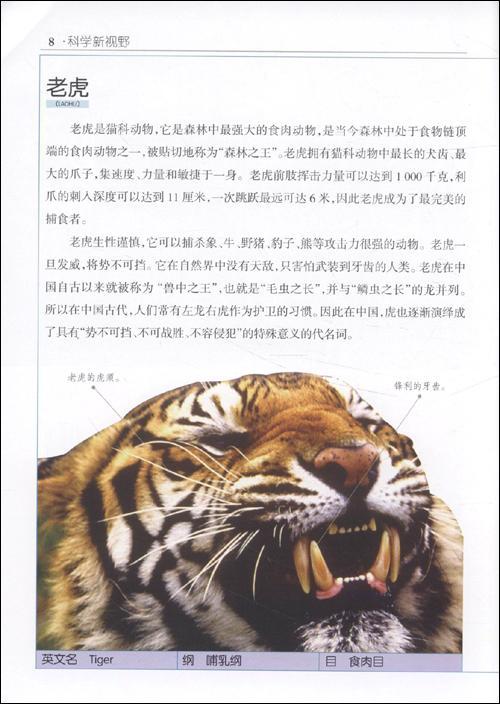 《陆地凶猛动物排行榜》()【简介 评价 摘要 在线
