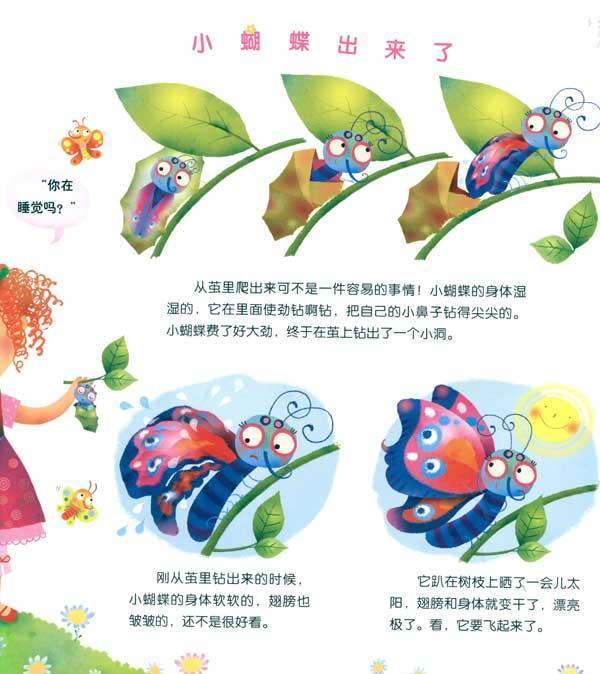 小蝴蝶成长记/来自法国的动物宝宝成长记