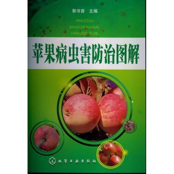 1060611苹果病虫害防治图解(库位6)图片一