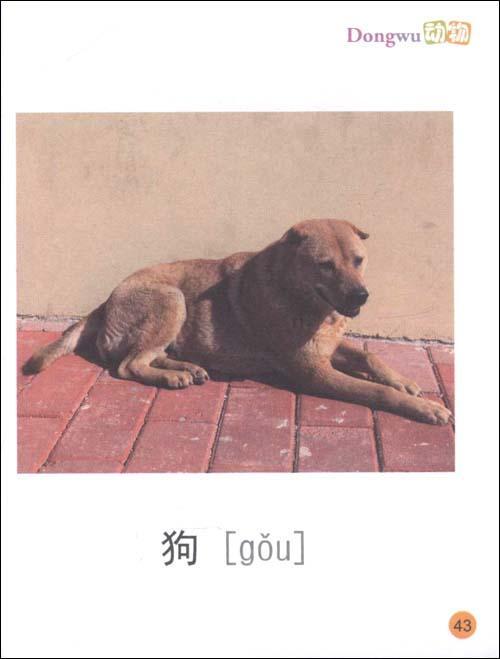 宝宝认知大全(第1辑):动物