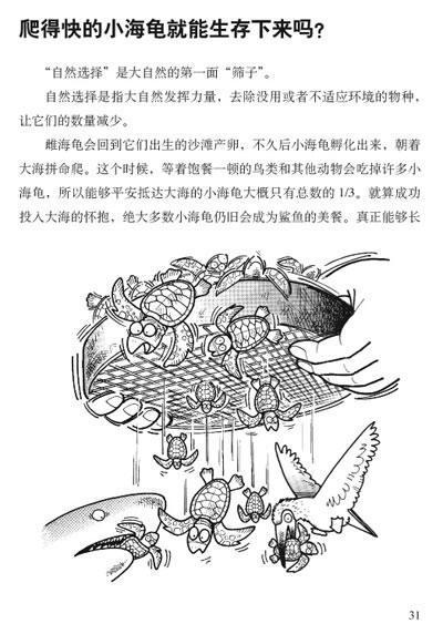 《给动物学家准备的小小观察手册》