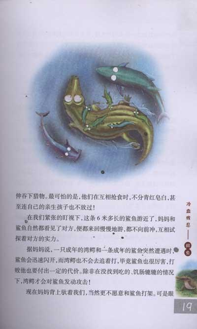 出生后的小湾鳄  天敌猎豹  本不是天敌的貂  天敌鲨鱼  鳄鱼的眼泪