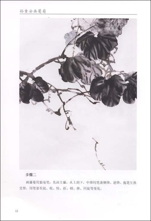 葡萄墨叶的画法  葡萄色叶的画法  藤蔓的画法  步骤  画紫葡萄的