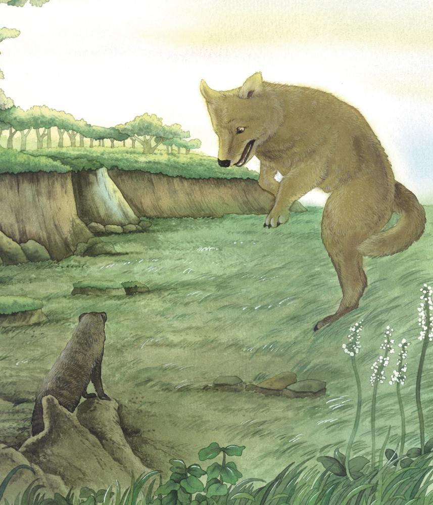 西顿动物故事经典(注音彩色美绘版)