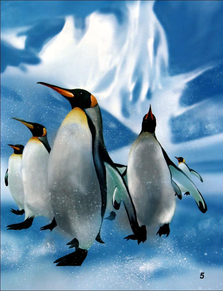 海洋动物探秘故事丛书帝企鹅和跳岩企鹅