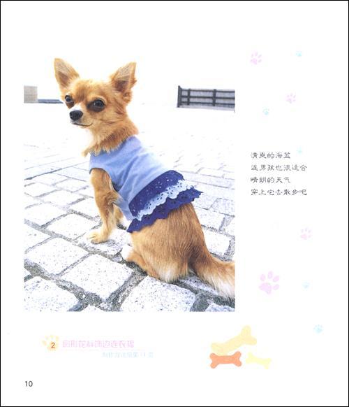 《我给狗狗做衣服》(阿瑛)【简介|评价|摘要|在线