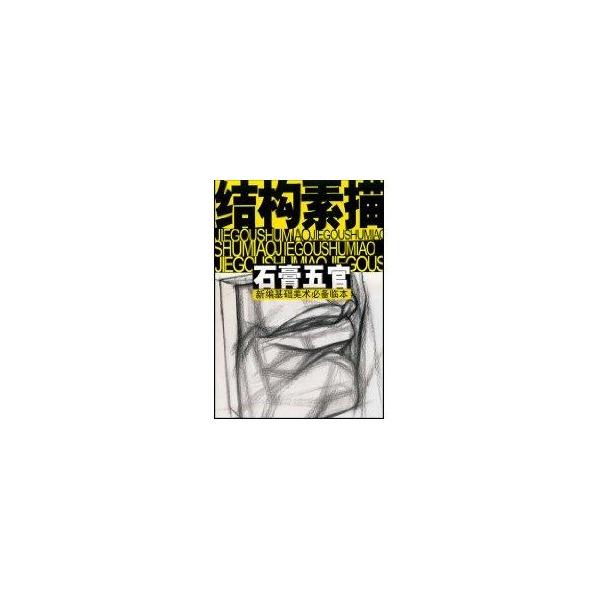 石膏五官/结构素描-沈玉佩