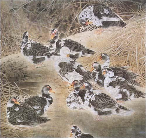 中国画技法.工笔鸭·鹅