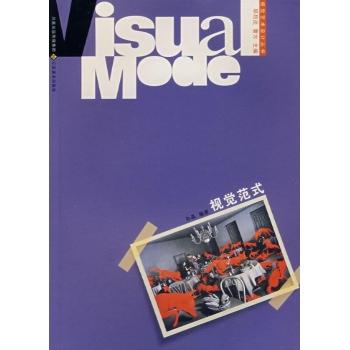 视觉范式/视觉传达设计-孙晶-艺术理论与评论-文轩网