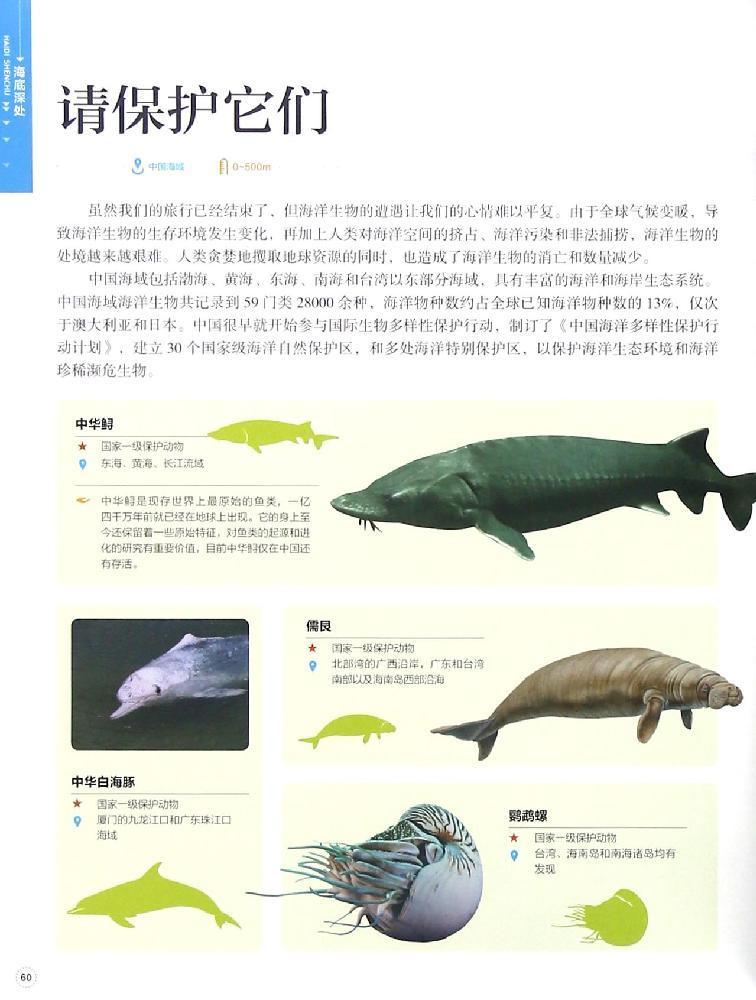 会放电的鱼  会发光的鱼  深海世界  下潜的极限  海底地形  海底