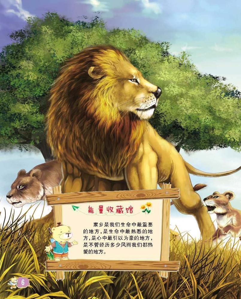 壁纸 动物 狮子 桌面 805_1000 竖版 竖屏 手机