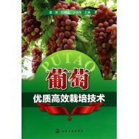 葡萄优质高效栽培技术