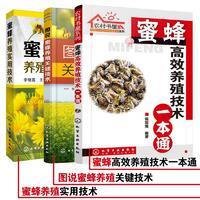 蜜蜂养殖专业技术大全(3册)