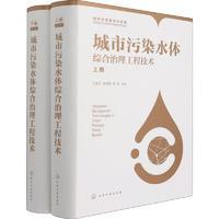 城市污染水体综合治理工程技术(全2册)